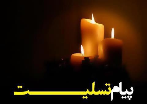 مدیر اجرایی هفته نامه شریف حادثه منا را تسلیت گفت